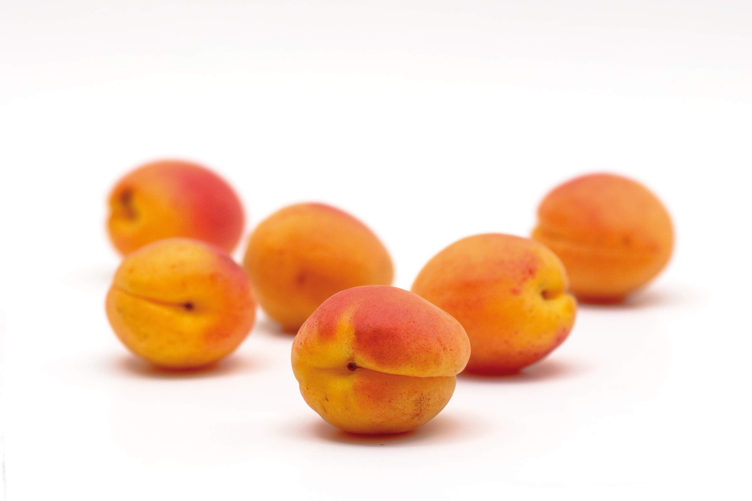 Apricot kernels are surrounded by tasty andsweet apricots